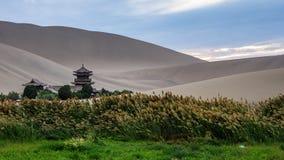 绿洲和亭子在沙漠 免版税库存图片