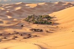 绿洲撒哈拉大沙漠 免版税图库摄影