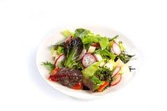 绿色、乳酪和萝卜沙拉在被隔绝的白色背景 免版税库存图片