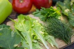 绿色、莴苣和菜沙拉特写镜头的 库存图片