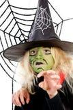 绿色万圣节可怕spiderweb巫婆 图库摄影