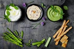绿色与各种各样的垂度的菜未加工的快餐板 酸奶调味汁或labneh、hummus、草本hummus或者pesto用薄脆饼干, grissini 免版税库存照片