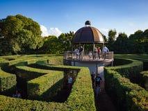 绿色丛生迷宫,园艺学设计 库存照片