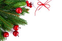绿色云杉的分支装饰用在白色背景的莓果 新年` s,圣诞节装饰 图库摄影