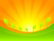 绿色例证本质向量 免版税库存照片