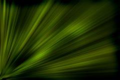 绿色光芒 向量例证