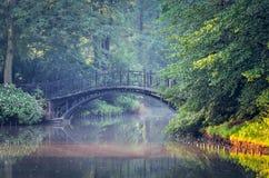 绿色公园早晨 免版税库存照片