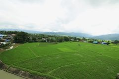 绿色农场和山 免版税库存照片