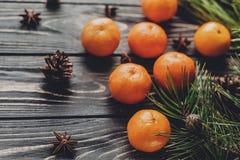 绿色冷杉分支与在ru的蜜桔和茴香和杉木锥体 免版税库存照片