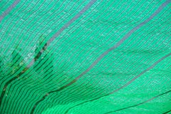 绿色净阴影 库存照片