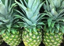 绿色准备好市场新鲜的菠萝买 免版税库存图片