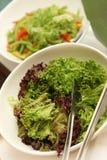 绿色凉拌生菜 库存图片
