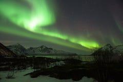 绿色北极光极光Borealis在挪威海湾上的清楚的繁星之夜 库存照片