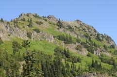 绿色华盛顿山 免版税库存图片