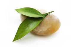 绿色叶子向黄色扔石头 免版税库存图片