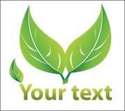绿色叶子徽标 向量例证