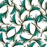 绿色叶子明亮的葡萄酒背景  在白色背景的拉长的等高 ?? 您的设计的不尽的纹理,瓦片和 向量例证