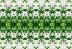 绿色叶子的装饰品在冰的 库存图片