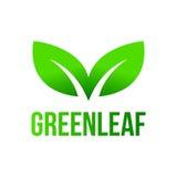绿色叶子,叶子商标 免版税库存照片
