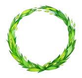 绿色叶子,抽象框架 库存照片
