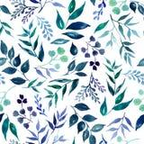 绿色叶子,草本,热带植物手拉的水彩的无缝的样式 新鲜的秀丽土气eco友好的背景 皇族释放例证