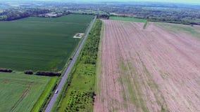 绿色和棕色领域在英国乡下从上面通过寄生虫 股票录像