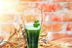 绿色啤酒和三叶草在玻璃 免版税库存图片