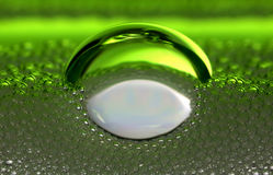 绿色嘶嘶响 免版税库存图片