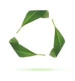 绿色图标叶子回收 免版税图库摄影