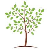 绿色图标结构树 皇族释放例证