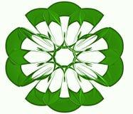 绿色圆的传染媒介 库存图片