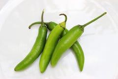 绿色在一块白色板材的jalapeño辣胡椒 库存例证