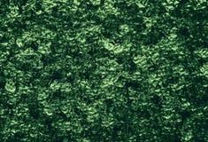 绿色塑料纹理  库存图片