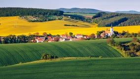 绿色夏天风景风景视图 免版税库存图片