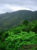 绿色多山横向 免版税库存图片