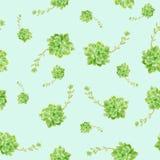 绿色多汁植物样式蓝色背景 免版税库存图片