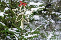 绿色多雪的圣诞树在森林里 图库摄影
