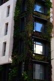 绿色大厦Façade在特写镜头的 免版税库存照片