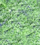 绿色大理石石表面纹理 库存照片