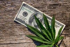 绿色大麻生叶和100在木桌上的美金 免版税图库摄影