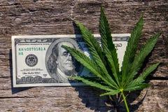 绿色大麻生叶和100在木桌上的美金 库存照片