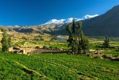 绿色安地斯山的谷,秘鲁 图库摄影