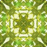 绿色定了调子优美的金刚石摘要纹理 详细的发光的宝石背景例证 豪华织品设计样品 纺织品PR 皇族释放例证