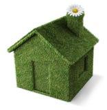 绿色家 免版税图库摄影