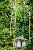 绿色密林森林和小屋或者小大厦 免版税库存图片