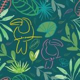 绿色密林tucan无缝的样式背景设计 皇族释放例证