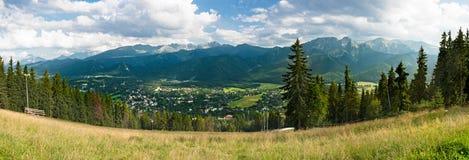 绿色山全景 库存照片