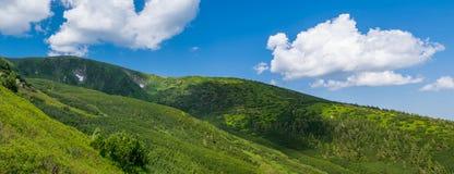 绿色山在乌克兰 免版税库存照片