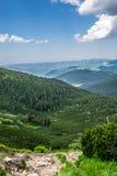 绿色山在乌克兰 库存照片