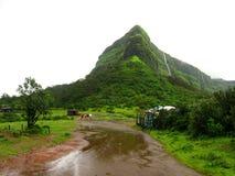 绿色山在印度 免版税库存图片